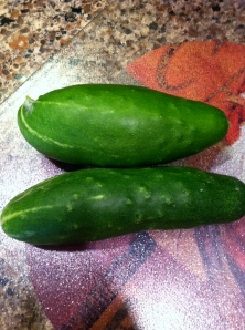 Cucumbers from my garden!