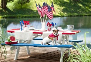 fourth-of-july-picnic-table-1